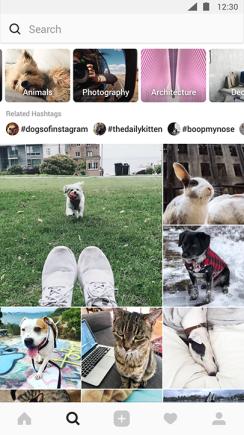 instagram-nuovo-tab-esplora443135943.png